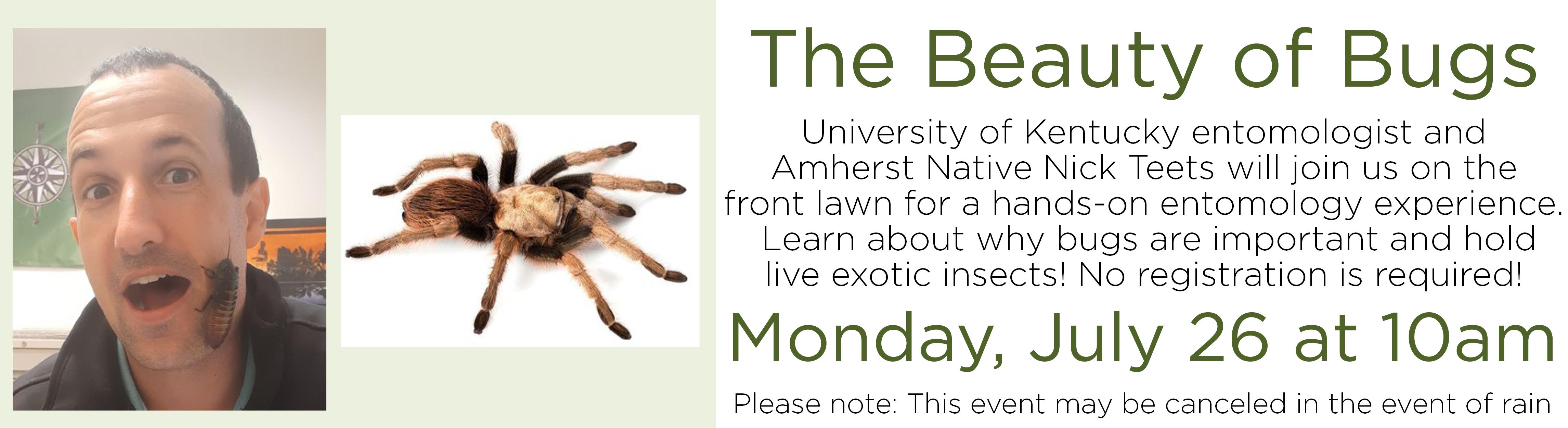The Beauty of Bugs – Outdoor Program